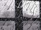 Дождливая погода сохранится в крае до конца суток