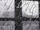 Сегодня местами по краю ожидается ливень с градом и сильным ветром