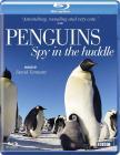 Пингвины скрытой камерой / Penguins: Spy in the Huddle (2013) [1/3] 720p BDRip