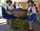 Праздник молодого вина отметят на Ставрополье