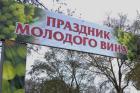 На Ставрополье прошёл праздник молодого вина