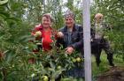 В Ставропольском крае стало больше садов и виноградников