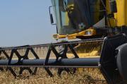 Массовая уборка озимой пшеницы началась на Ставрополье