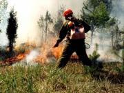 В некоторых районах Ставрополья 28-30 июня — высокая пожароопасность