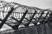 НаСтаврополье заключённый заплатит 250 тысяч рублей из-засъеденной проволоки