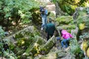 В крае формируется служба помощников госинспекторов по охране природы